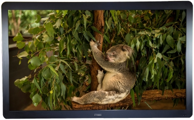 CTouch 70 inch LED